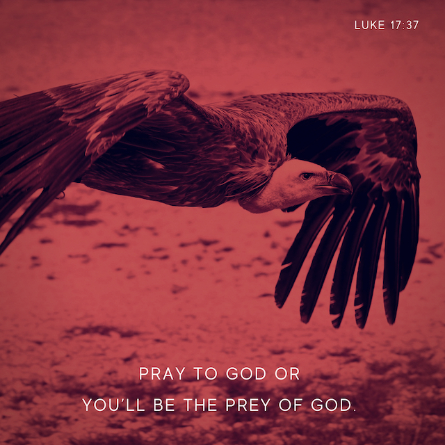 Luke 16v1-6